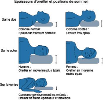 bon oreiller Choisir et acheter son oreiller: conseils et astuces faciles   Bio  bon oreiller